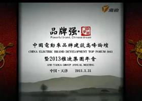 中国电动车高峰论坛暨雅迪年会