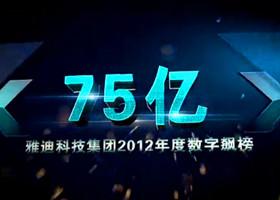 雅迪2012年度数字标榜