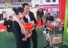 天津踏浪電動車股份有限公司