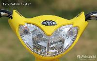 绿源电动车简易系列JYY2-4R4812-G2舞蝶