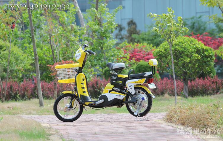 綠源電動車簡易系列JYY2-4R4812-G2舞蝶